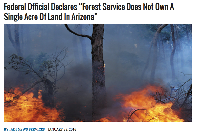 Forest Service in Arizona